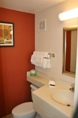 Red Roof Inn Cleveland Airport - Middleburg Heights: Bathroom