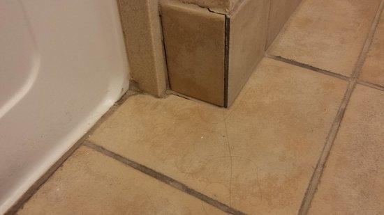 Hampton Inn Fort Stockton: popped tile and hair found on floor
