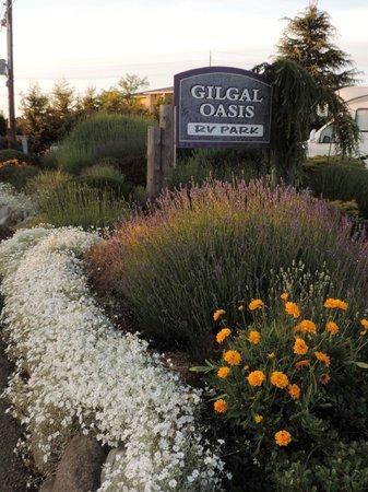 GilGal Oasis RV Park: Wonderful curb appeal