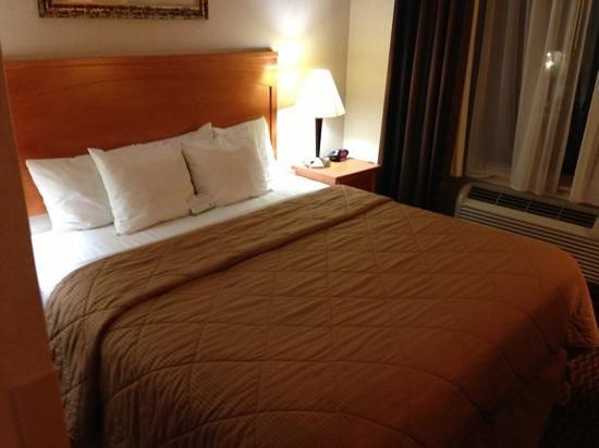 布魯克林舒適酒店張圖片
