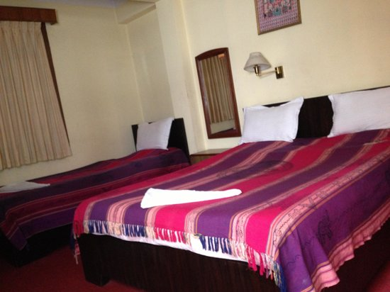 Shree Tibet Family Guest House: My room
