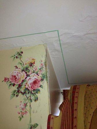 Chateau de Challanges : Moisissures de la chambre 204