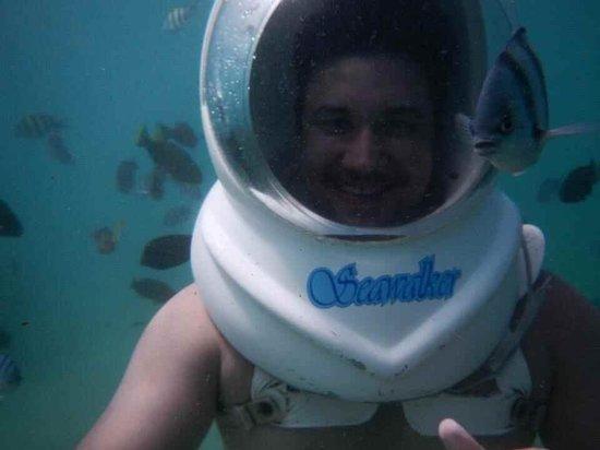Bali Success Day Tours: Smile fish lol