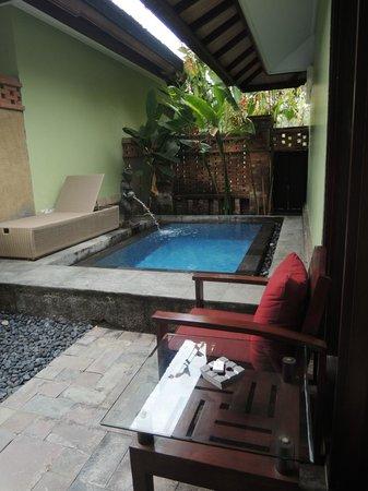 Rama Beach Resort and Villas: Private pool