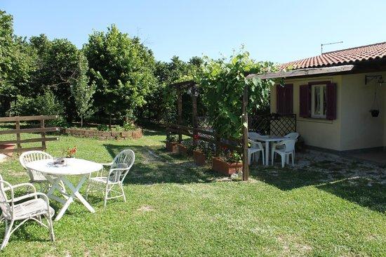 Bed & Breakfast Menica Marta Country House: giardino