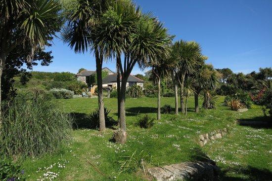 Ednovean Farm: Sicht auf Garten