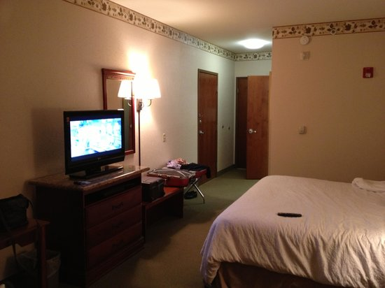 Hampton Inn Great Falls: Vue de la chambre