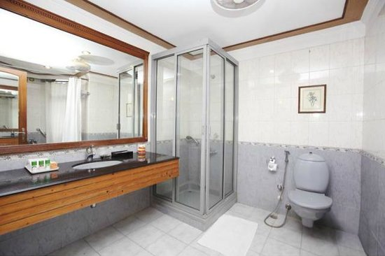 Hotel Park Residency: Bathroom