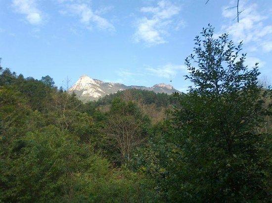 Shaoguan Yunji Mountain