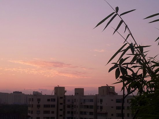 Step Inn Serviced Apartments: a sunrise shot i clicked from the terace