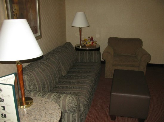 Embassy Suites by Hilton Dallas Love Field: Living room