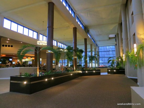 "Sheraton Charlotte Airport Hotel: Running water fountain adds to the ""outdoor"" feeling of the lobby"
