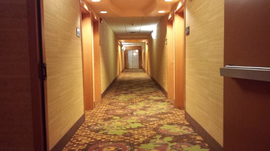Hampton Inn & Suites Albuquerque - Coors Road: hallway leading to our room