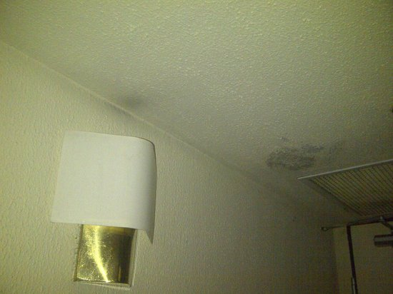 Sheraton Abuja Hotel: Ceiling was peeling off from leakage or something.
