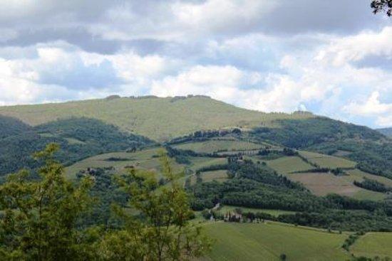 Agriturismo San Carlo: Landscape