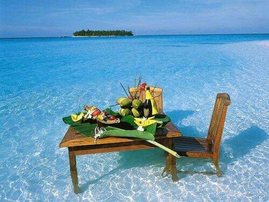 Maldive Due Palme: Maldives island♡`
