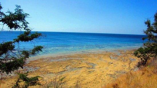 Mimpi Resort Menjangan: menjangan island