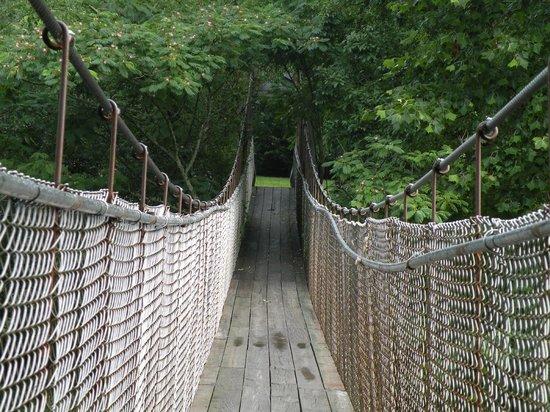 Swinging Bridge : Walking across the swing bridge.