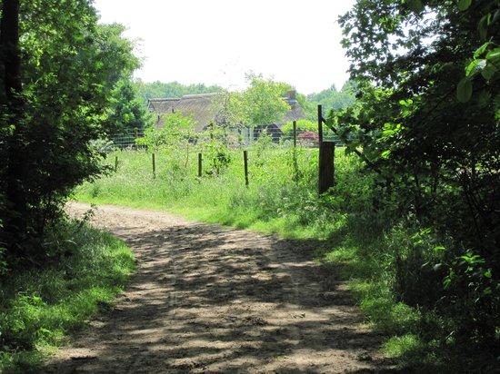 Landhotel Diever: Rode Paaltjes wandeling