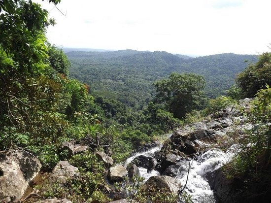 Jaguar Reef Lodge & Spa : Waterfall Hike Adventure- View from the top