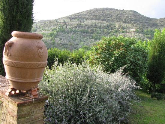 Casina Valloreci: View from Casina