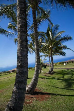 Kukuiolono Golf Course: no trees like this in Utah