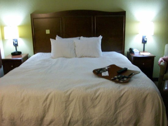 Hampton Inn Gatlinburg: Bedroom