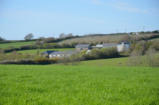Pollaughan Holiday Cottages: Pollaughan Farm
