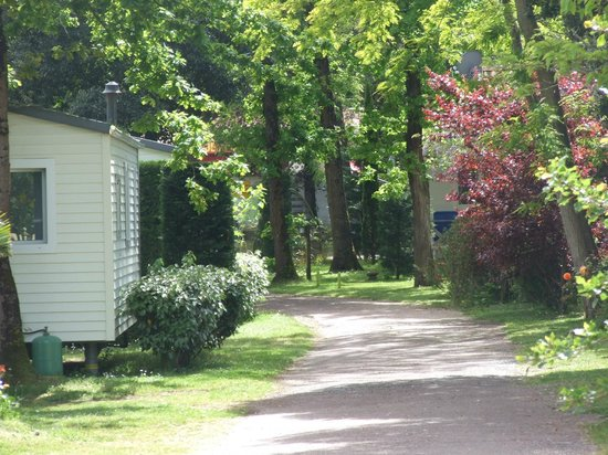 sanitaires dames  Picture of Camping Le Sous Bois, Saint  ~ Camping Le Sous Bois Oleron