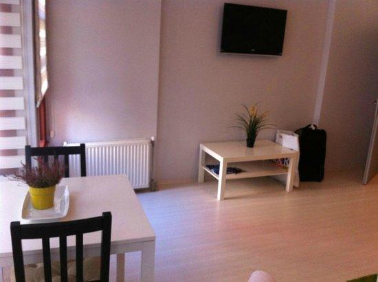 Ada Home Istanbul : living room