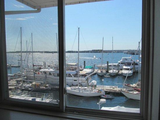 Newport Harbor Hotel & Marina: Vista