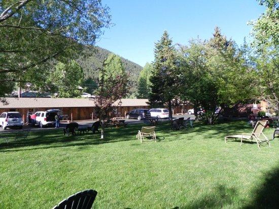 Buckrail Lodge: Nice green area