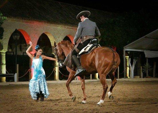 Espectaculo Pasion y Duende del Caballo Andaluz : ESPECTACULO ECUESTRE