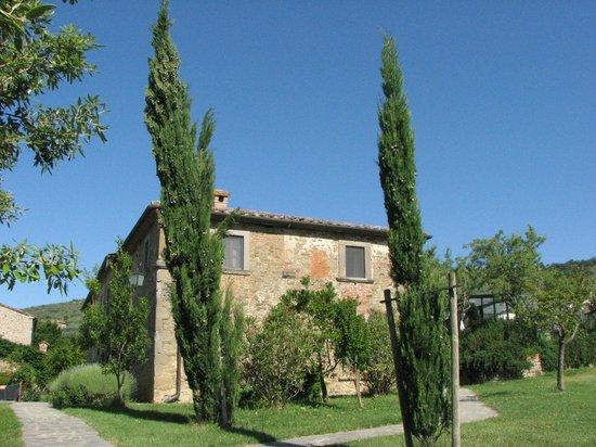 Villa Borgo San Pietro: Esterno