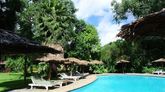 Arumeru River Lodge : The pool