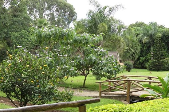 Arumeru River Lodge: Beautiful manicured grounds