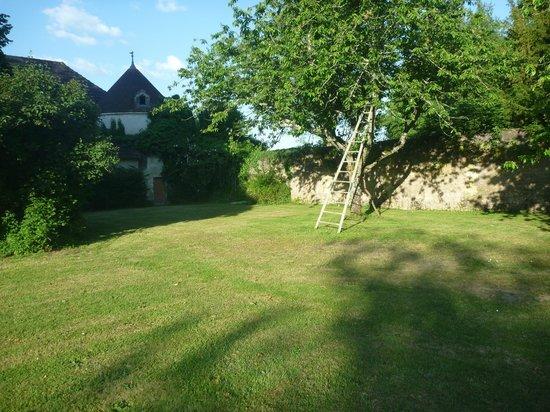 Chateau De Paradis: jardin