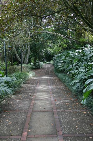 Finca Rosa Blanca Coffee Plantation & Inn: Short walk to main restaurant. Maybe 150 yards