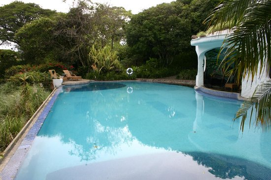 Finca Rosa Blanca Coffee Plantation Resort: didn't swim there, but they had a pool