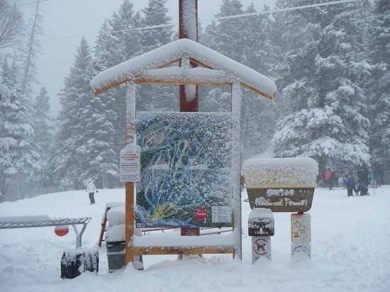 Vadito, New Mexiko: Sipapu is historically the first ski area to open and the last to close in New Mexico.