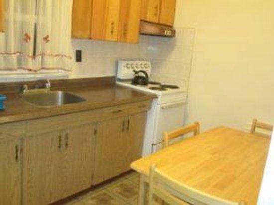 Clarkson Village Motel: nice kitchen