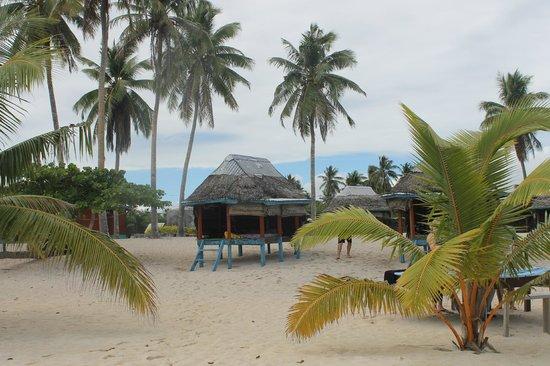 Falealupo Beach Fales : Fales on beach