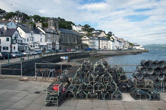 The Lookout: Aberdovey Town/Harbour