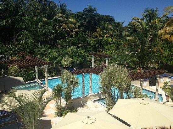 Blue Boy Inn : the gorgeous pool!
