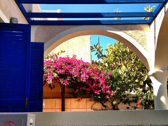 The Boathouse Hotel: Bougainvilia