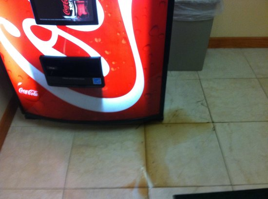 Quality Inn & Suites: Coke machine leaking?????
