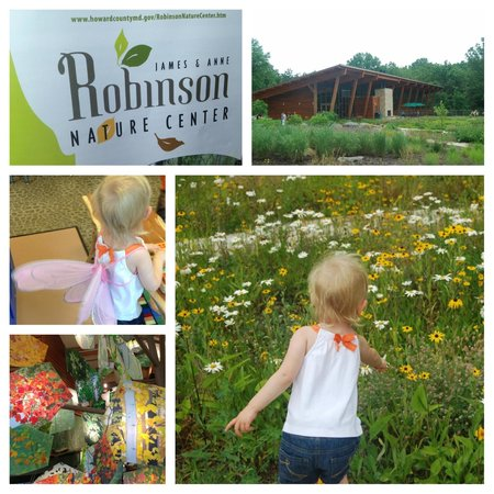 Robinson Nature Center: We had so much fun today! Gorgeous location!
