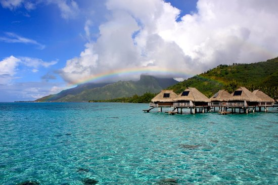 Hilton Moorea Lagoon Resort & Spa: View from our bungalow