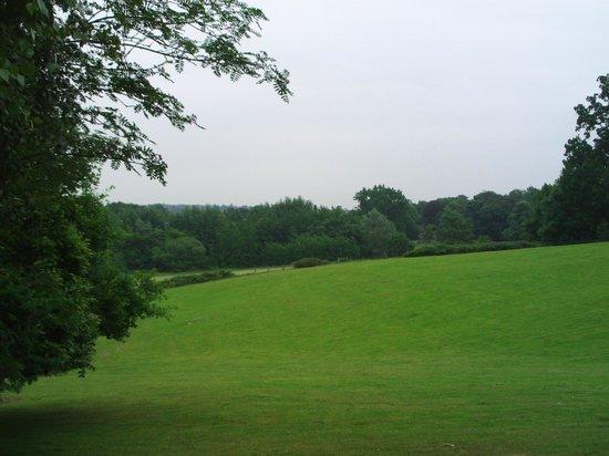 Sunningdale Park: Lovely hotel grounds