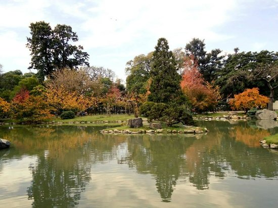 Jardin Japones : .